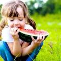 12 Services de santé de la pastèque