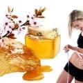 14 Services de santé de miel