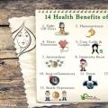 14 Services de santé de l'oignon