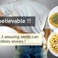 Vous ne serez pas croire à quel point ces 2 surprenantes graines peuvent enlever des calculs rénaux sans effort!