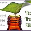 12 Chaque jour, utilise de l'huile essentielle d'arbre à thé