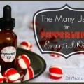 15 grandes utilisations de l'huile essentielle de menthe poivrée