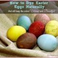 Teinture oeufs de Pâques est naturellement un projet de famille amusant!