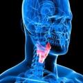 Aliments pour améliorer la santé de la thyroïde