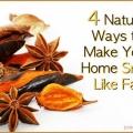 Quatre produits désodorisants maison pour l'automne