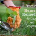 Accueil recours pour la toux et la congestion printemps