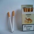 Fabricant de cigarettes de chameaux interdit de fumer en milieu de travail