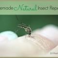 Natural maison insectes / insectifuge pulvérisation