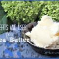 Avantages de beurre de karité et des moyens préférés pour l'utiliser
