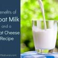 Les avantages de lait de chèvre et une recette de fromage de chèvre