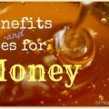 Les nombreux avantages de et utilise pour le miel