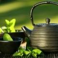 Top 10 des meilleures marques de thé vert dans le monde