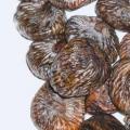 5 meilleurs avantages de figues sèches pour la peau, des cheveux et santé