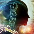 5 types d'ondes cérébrales et les effets de la méditation sur eux