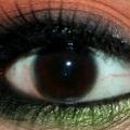 Inspiré des yeux Maquillage Automne Tutorial avec des étapes détaillées et les photos