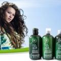 Meilleures shampooings d'arbre à thé