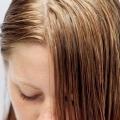 Accueil recours pour traiter le cuir chevelu gras