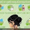 Comment faire de l'aloe vera naturel shampooing à la maison? Making of home made aloevera recette de shampooing