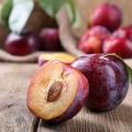 Top 10 des fruits avec la plus haute teneur en eau