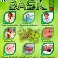 Top 10 des avantages pour la santé de basilic