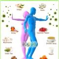 Top 10 superaliments pour stimuler l'immunité