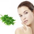 Top avantages de neem pour soins de la peau
