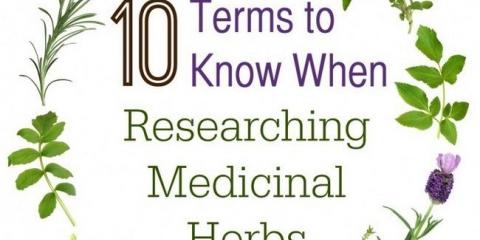 10 Conditions de savoir quand des recherches sur les plantes médicinales