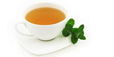 La puissance du thé vert pour la perte de poids a révélé