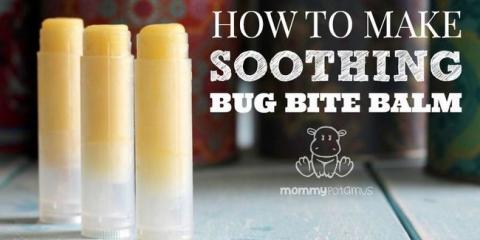 Bug morsure baume recette