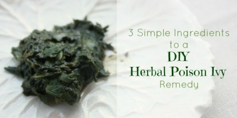Poison ivy remède bricolage