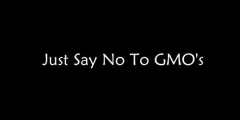 Ne manquez pas cette vidéo: il suffit de dire non à des OGM