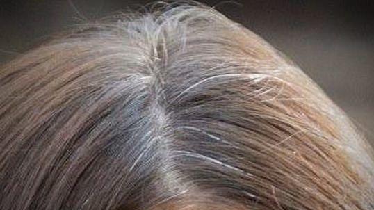remede cheveux gris