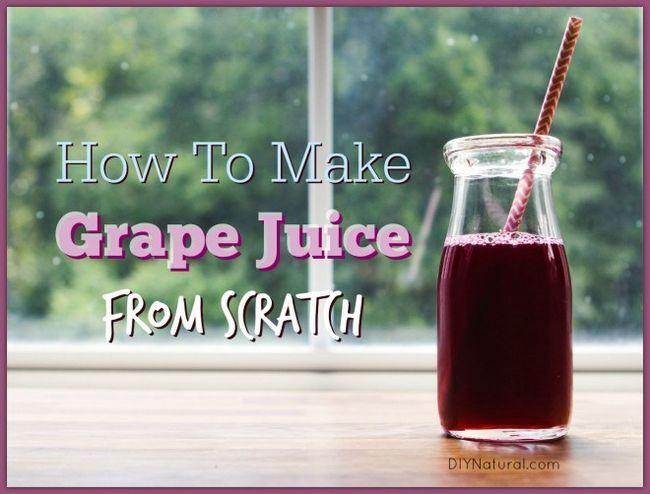comment faire de jus de raisin à la maison à partir de zéro