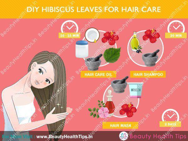 Hibiscus pour le soin des cheveux comment contr ler la - Comment entretenir un hibiscus ...